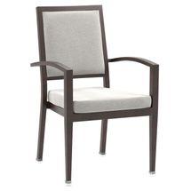 Maxwell Thomas Galveston Faux-Wood Metal Dining Chair