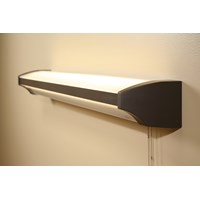 Plymouth LED Overbed Light with Pull Chain: 4 ft.