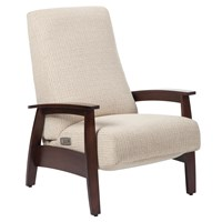 Quick-Ship Glen Ellyn Power Recliner in Crypton Fabric
