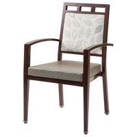 Scottsdale Activity Chair